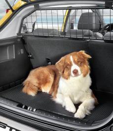 Решітка-обмежувач багажника STONIC